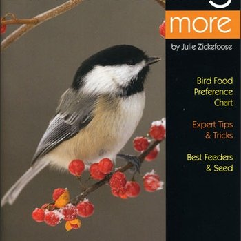- BWD: ENJOYING BIRD FEEDING MORE