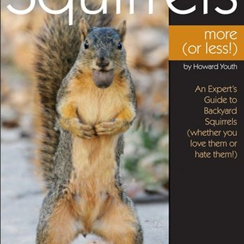 - BWD: ENJOYING SQUIRRELS MORE OR LESS