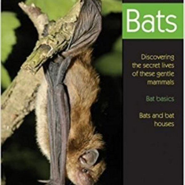 - BIRD WATCHER'S DIGEST: UNDERSTANDING BATS