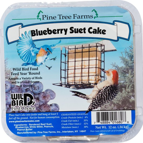 - PINE TREE BLUEBERRY SUET