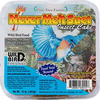 - PINE TREE INSECT SUET