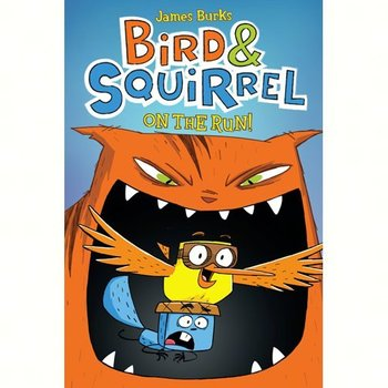 - BIRD & SQUIRREL ON THE RUN