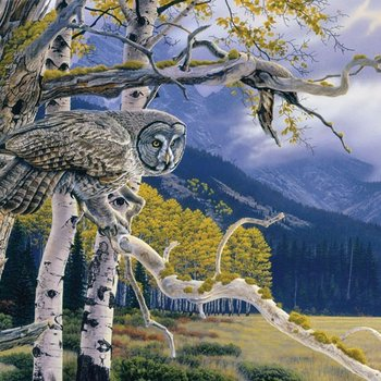 - COBBLE HILL GREAT GREY OWL PUZZLE 1000PC