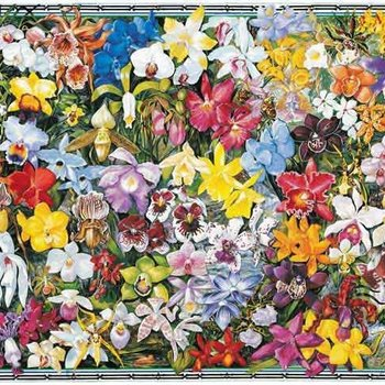 - WHITE MOUNTAIN ORCHIDS PUZZLE 1000 PC.