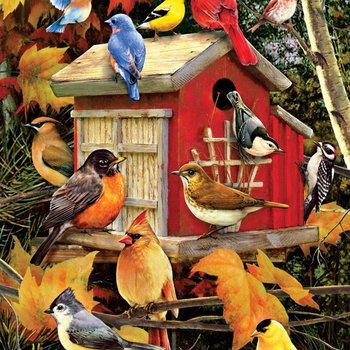 - COBBLE HILL FALL BIRDS PUZZLE 1000 PC
