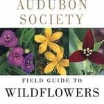 - NATIONAL AUDUBON SOCIETY FIELD GUIDE TO WILDFLOWERS: EASTERN REGION