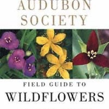 - NATIONAL AUDUBON SOCIETY FIELD GUIDE TO WILDFLOWERS: EASTERN REGION