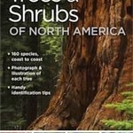 - NATIONAL GEOGRAPHIC POCKET GUIDE TO TREES OF NORTH AMERICA