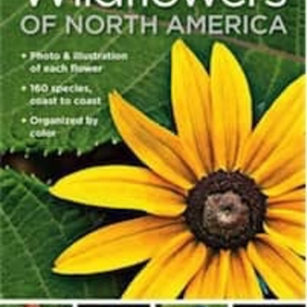 - NATIONAL GEOGRAPHIC POCKET GUIDE TO WILDFLOWERS OF NORTH AMERICA