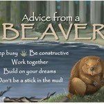 -ADVICE FROM A BEAVER MAGNET