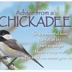 -ADVICE FROM A CHICKADEE MAGNET