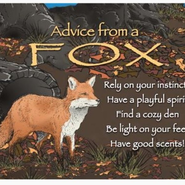 -ADVICE FROM A FOX MAGNET