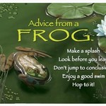 -ADVICE FROM A FROG MAGNET