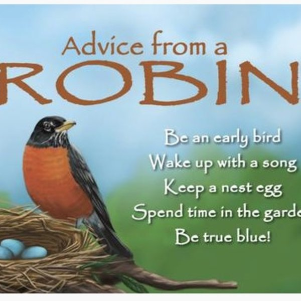 -ADVICE FROM A ROBIN MAGNET