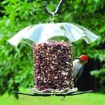 - BIRDS CHOICE SEED CYLINDER FEEDER CLEAR TOP & BOTTOM W/PERCHES