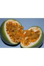 Fruit de la passion - balsamique blanc