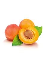 abricot blenheim SG - balsamique blanc