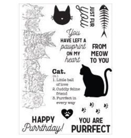 Kaisercraft KS stamp pawfect cat