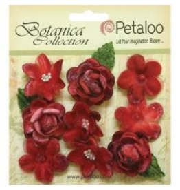 Petaloo PLOO flowers red velvet