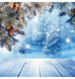 Reminisce 12Rm winter wonderland