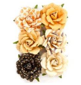 Prima Priima flowers hazel