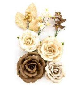 Prima Priima flowers aspen