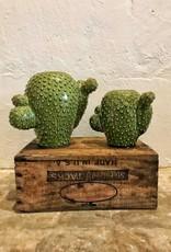 Set of 2 Round Ceramic Cactus Vases