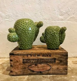 Set of 2 Round Ceramic Cactus Vases