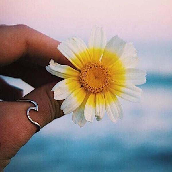 Pura Vida Pura Vida Wave Ring Silver