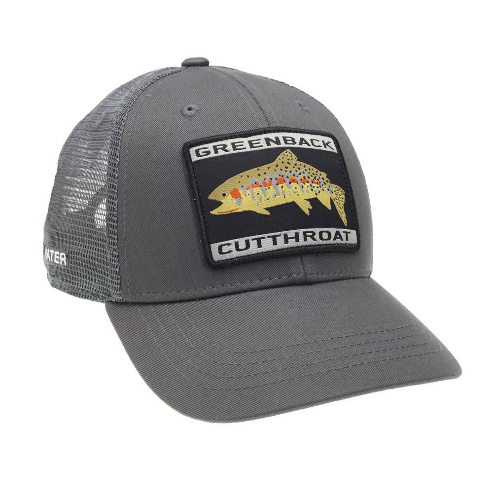 Rep Your Water L.L.P. Rep Your Water Greenback Cutthroat Meshback Hat - Gray/Gray