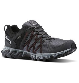 Reebok Men's Trailgrip 5.0 GTX Ash