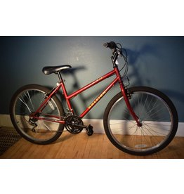 Raleigh M30 - 17 in