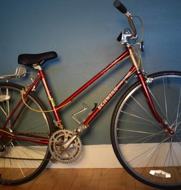 Schwinn Traveler 19.5 in