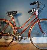 World Tourist Schwinn 19.5""