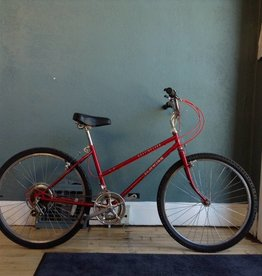 Schwinn Mesa Runner 17 IN