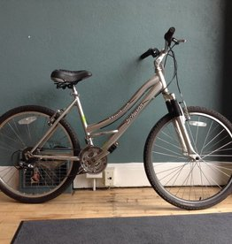 Schwinn Clear Creek 17 in Hybrid