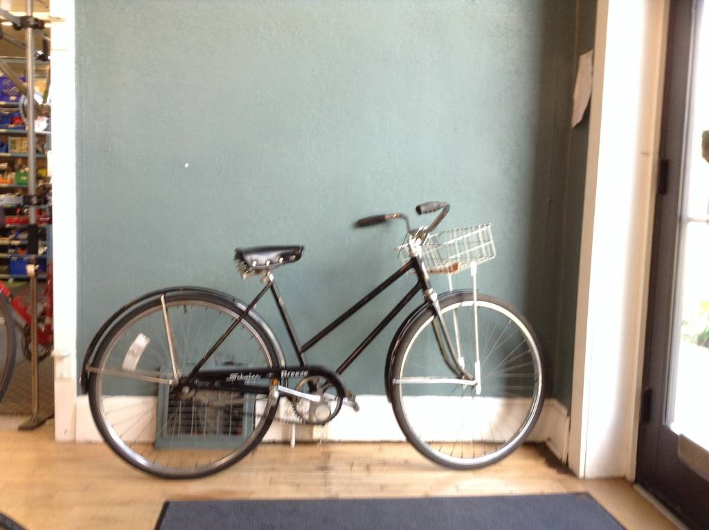 Schwinn Breeze 48cm 19in