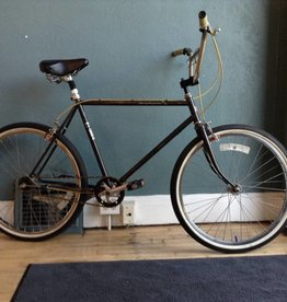 Schwinn Mesa Runner 3-Speed 20 in