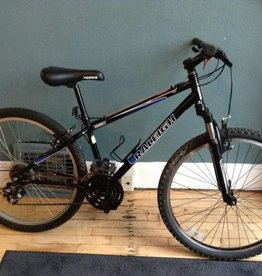Raleigh Mojave 2.0 14.5 in