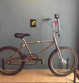 Team Murray BMX 20 in Gold