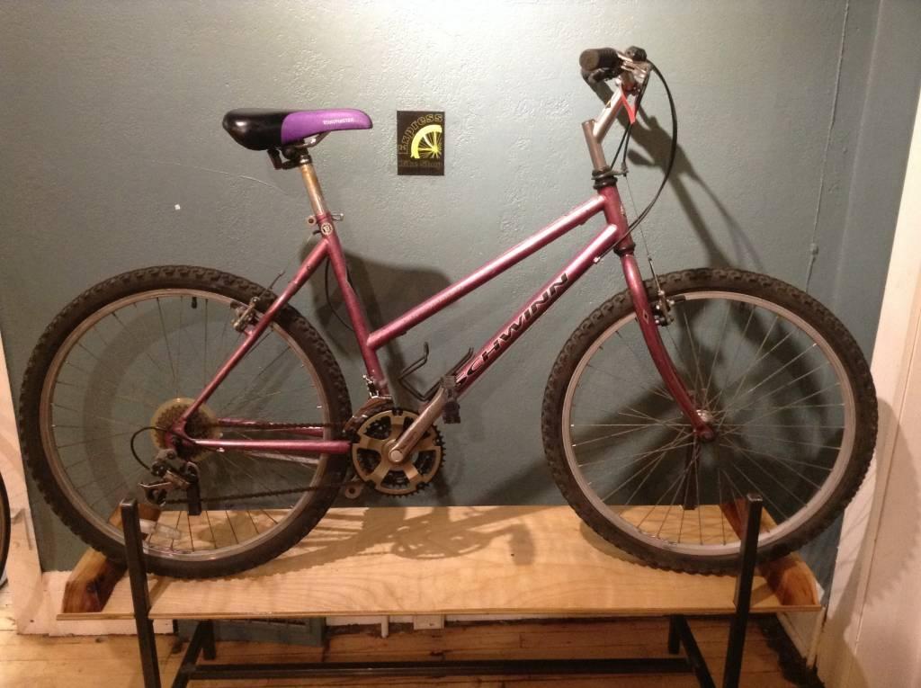 Schwinn Frontier Purple 19 in