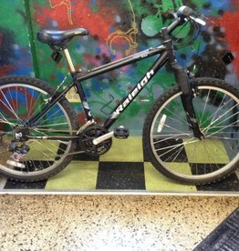Raleigh Raleigh M20 14.5""