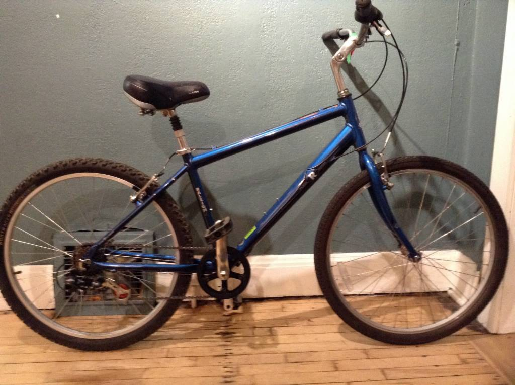 Raleigh RALEIGH VENTURE 17 in