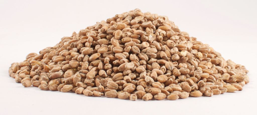 Grain Weyermann Oak Smoked Wheat 1 Lb