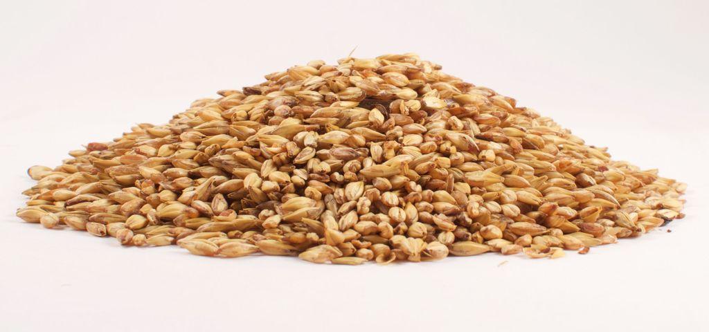 Grain Briess 2-Row Brewers Malt 1 Lb