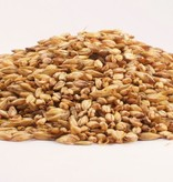 Grain Motor City Malt Pale (4-6L) 1 Lb Bag