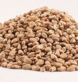 Grain Briess White Wheat Malt 1 Lb