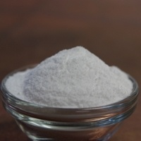 BSG Amylase Enzyme 5 Lb