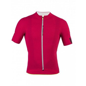 Q36-5 Q36.5 L1 Short Sleeve Jersey - Pinstripe Red