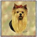 "54"" Lap Square Yorkshire Terrier"
